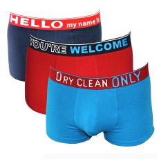 PACK DE 3 BOXERS NAVY/ROUGE/TURQUOISE - THE SEASONAL - DIESEL